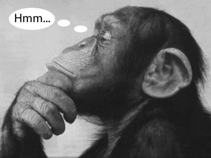 monkey-thinking.jpg