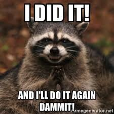 I did it! And I'll do it again dammit! - evil raccoon | Meme Generator