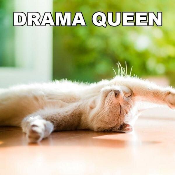 drama-queen.large.jpg