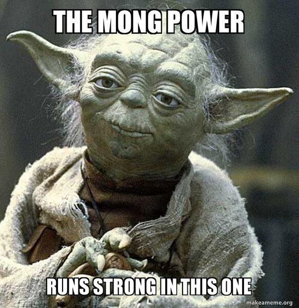 Image result for Mong meme
