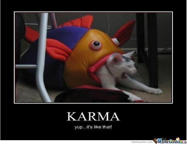 Funny karma Memes